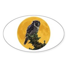 Owl and Moon Oval Decal