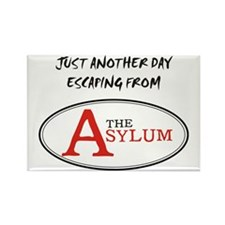 Escaping The Asylum Rectangle Magnet
