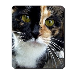 Kitty 2 Mousepad