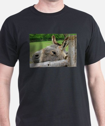 Donkey Just Wants a Hug T-Shirt