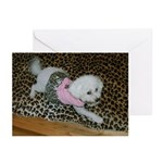 SOPHIE IN PINK GREETING CARDS (PACK OF 10)