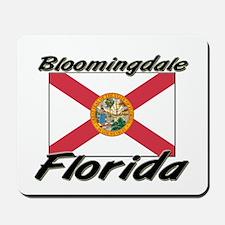Bloomingdale Florida Mousepad