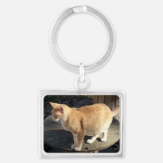 Orange Feral Tabby Cat Keychains