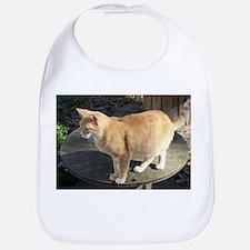 Orange Feral Tabby Cat Bib