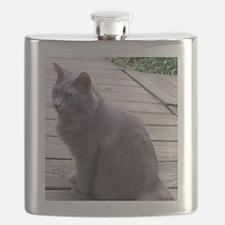 Gray Cat Flask