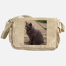 Gray Cat Messenger Bag