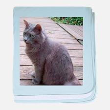 Gray Cat baby blanket