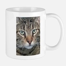 Brown Tabby Cat Mugs