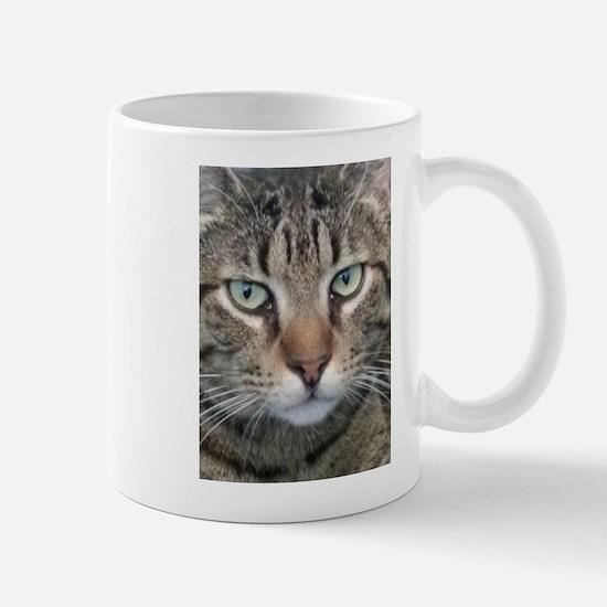 Brown Tabby Cat Mugs