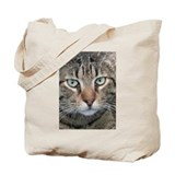 Brown tabby cat Canvas Totes