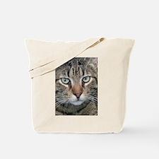 Brown Tabby Cat Tote Bag