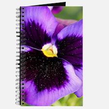Cute Pansy flower Journal