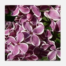 Sensation Lilac Tile Coaster