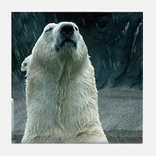 Polar Bear Tile Coaster