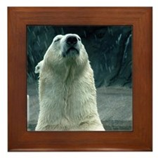 Polar Bear Framed Tile