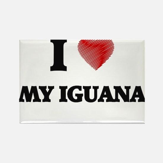 I Love My Iguana Magnets
