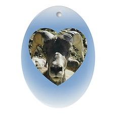 Big Horn Sheep Keepsake (Oval)
