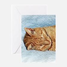 Sleepy Kitty Greeting Cards