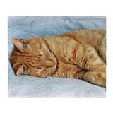 Cat orange tabby cats Fleece Blankets
