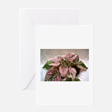 African Violet~Illini Peace Greeting Card
