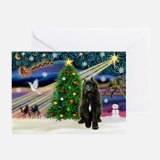 Xmas Magic / Bouvier Greeting Cards (Pk of 20)