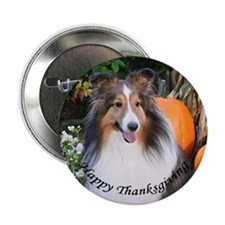 Thanksgiving Sheltie Button