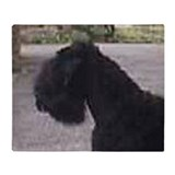 Black russian terrier Fleece Blankets