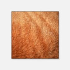 Close-up of Cat Fur Sticker