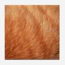 Close-up of Cat Fur Tile Coaster