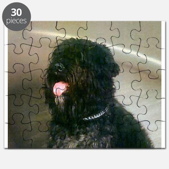 Bouvier des Flandres Puzzle