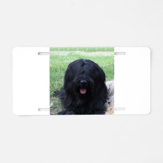 briard black Aluminum License Plate