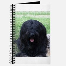 briard black Journal