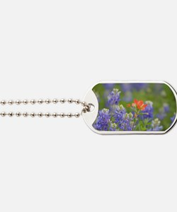 Cute Indian paintbrush Dog Tags