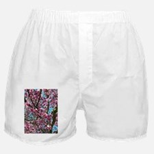 Tulip Tree Boxer Shorts