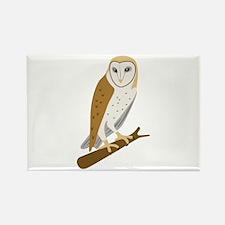 Barn Owl Magnets
