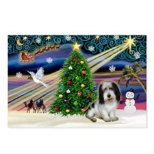 Xmas Magic/PBGV (#1) Postcards (Package of 8)