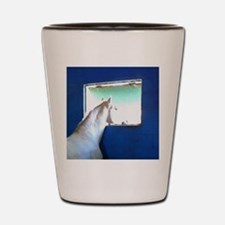 White Horse Blue Window Shot Glass
