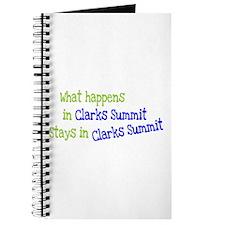 What Happens In Clarks Summit Journal