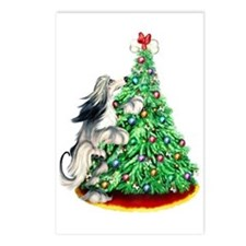 Afghan Hound Domino BC ReachGoals Postcards (Packa