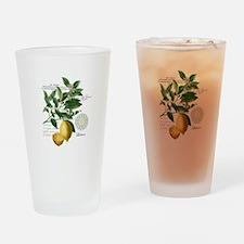 Modern Vintage Lemons Drinking Glass