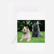 cairn terrier group Greeting Cards