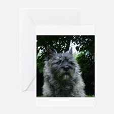 cairn terrier black Greeting Cards