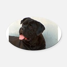 cane corso Oval Car Magnet