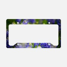 Cool Bluebonnets License Plate Holder