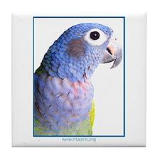 Blue-Headed Pionus - Tile Coaster