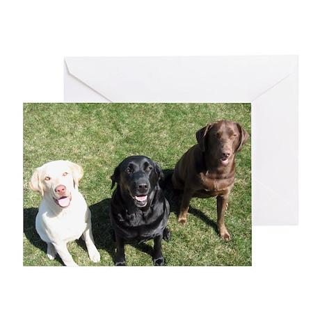 Lab Trio Greeting Card