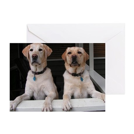 Aug Lab of the Month Greeting Cards (Pk of 20)