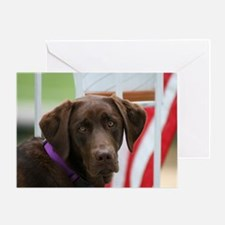 Jul Lab of the Month Greeting Card