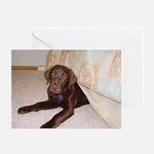 Labrador Bed Bug Greeting Card