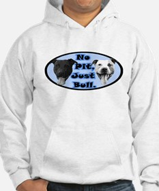 No Pit, Just Bull. Hoodie